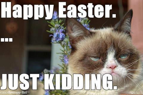grumpy cat Easter meme funny