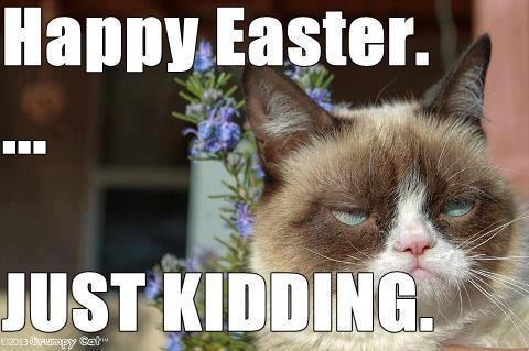 Easter Funny Grumpy Cat Grumpy Cat Meme Tard The Cat Thought Of The Day
