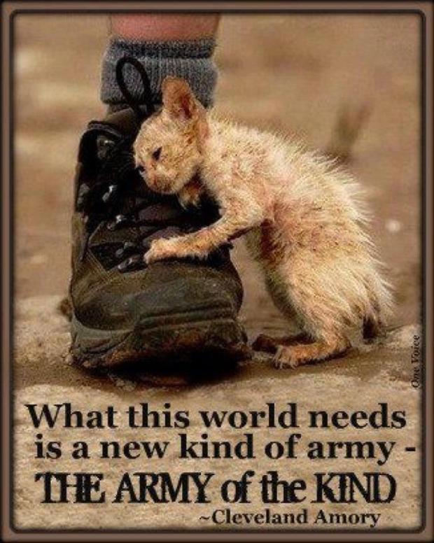kind army